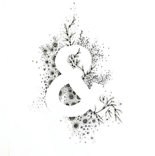 tash willcocks illustration